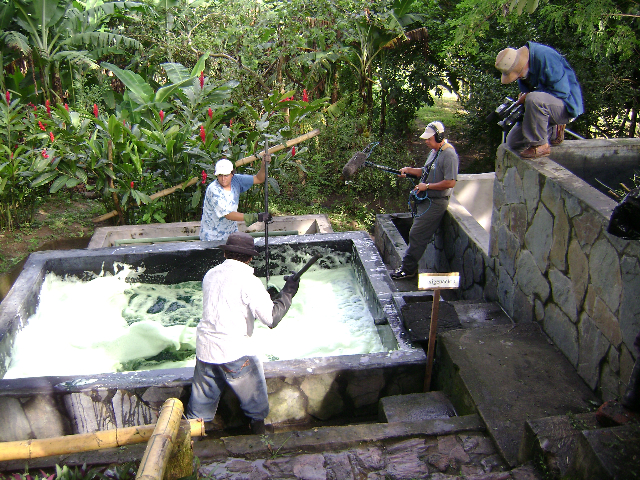 Shooting indigo tank at Hacienda Los Nacimientos, El Salvador, 2008. Photo by Mary Lance