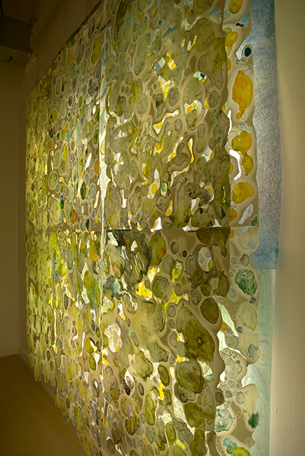 Roland_encaustic_6. Paula Roland, Disappear, installation side view