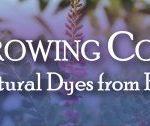 Growing Color Symposium