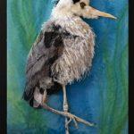 Birds of a Fiber Exhibition